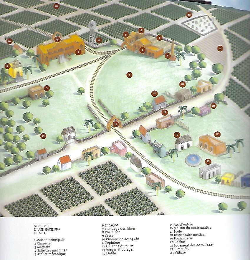 Map of an hacienda of sisal Yucatan