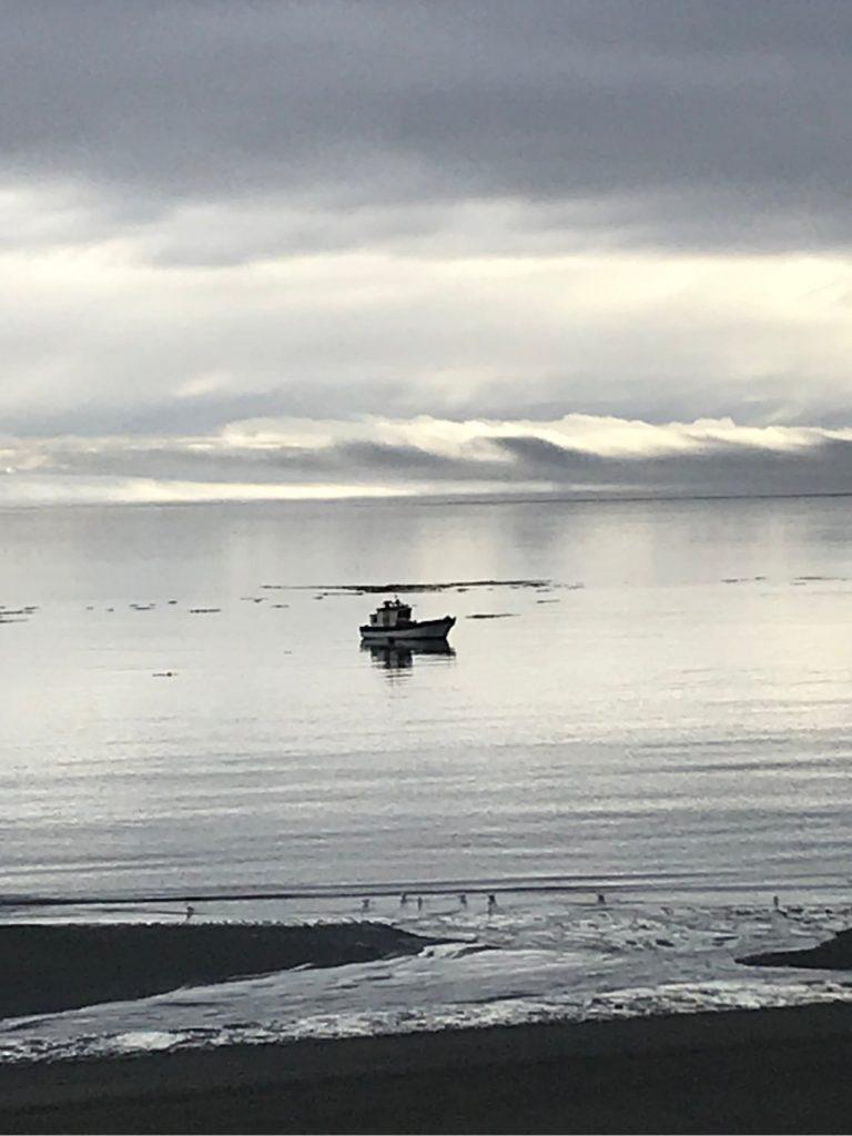 Patagonia Chiloé